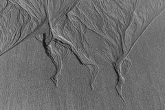 Testes padrões na areia Fotos de Stock Royalty Free