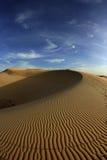 Testes padrões na duna de areia Fotografia de Stock