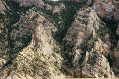 Testes padrões nas formações em Yellowstone Imagens de Stock Royalty Free