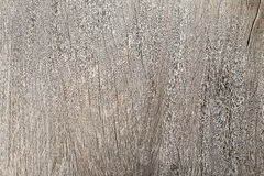 Testes padrões nas portas de madeira Imagens de Stock
