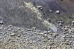 Testes padrões rochosos na cama de mar Imagem de Stock Royalty Free