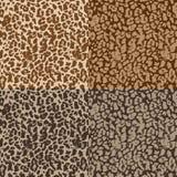 Testes padrões sem emenda com textura da pele Fotos de Stock