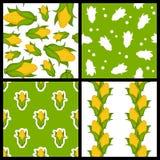 Testes padrões sem emenda da espiga de milho ajustados Fotos de Stock