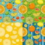 Testes padrões sem emenda do vetor com citrinas Foto de Stock Royalty Free