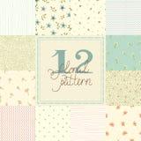 12 testes padrões sem emenda do vetor diferente bonito (telha). Fotografia de Stock Royalty Free