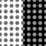 Testes padrões sem emenda florais preto e branco Grupo de fundos Fotografia de Stock Royalty Free