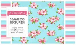 2 testes padrões sem emenda Flores de Sakura ilustração royalty free