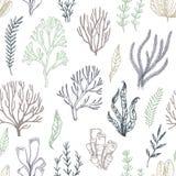 Testes padrões sem emenda tirados mão do vetor seaweed Fundo com ele ilustração do vetor