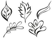 Testes padrões da folha do ornamento Foto de Stock