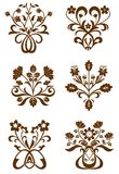Testes padrões de flor Imagem de Stock