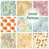 Testes padrões decorativos sem emenda da folha à moda Foto de Stock Royalty Free
