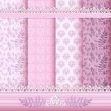 Testes padrões e beiras florais ajustados. Imagem de Stock Royalty Free