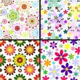 Testes padrões florais sem emenda ajustados Fotos de Stock Royalty Free