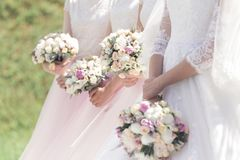 Testimoni alle nozze Fotografia Stock Libera da Diritti