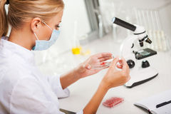 Testing blood samples. Royalty Free Stock Photos