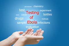 Testing of ebola word cloud Stock Photography