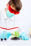 Testing gmo products Royalty Free Stock Photos