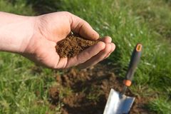 Testing the soil Royalty Free Stock Image