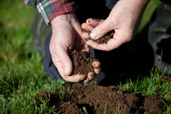 Testing the soil. Farmer testing the soil on old pasture royalty free stock images