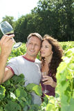 Testing wine. Couple of winegrowers drinking wine in vineyard Royalty Free Stock Image