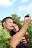 Testing wine. Couple of winegrowers drinking wine in vineyard Stock Photo