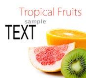 Testo del campione con la frutta tropicale Fotografia Stock Libera da Diritti