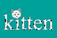 Testo del gattino Fotografia Stock Libera da Diritti