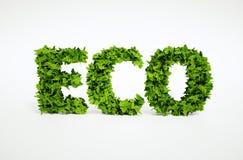 Testo della foglia di Eco Fotografia Stock Libera da Diritti