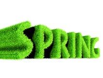 Testo della primavera fatto di erba illustrazione di stock