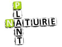 testo delle parole incrociate della natura della pianta 3D Illustrazione di Stock