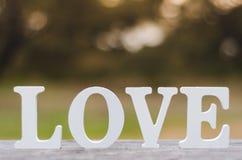 Testo di amore Fotografia Stock
