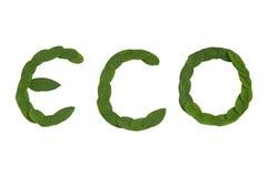 Testo di Eco Fotografia Stock