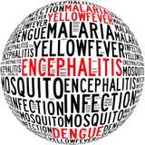 Testo di malattie Info di infezione della zanzara Fotografia Stock