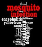 Testo di malattie Info di infezione della zanzara Fotografia Stock Libera da Diritti