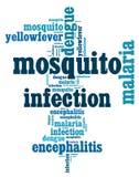Testo di malattie Info di infezione della zanzara Immagini Stock
