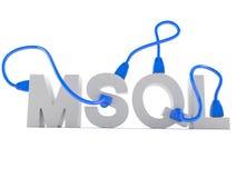 Testo di MYSQL con il cavo della rete Immagini Stock Libere da Diritti