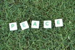 Testo di pace sull'erba fotografia stock