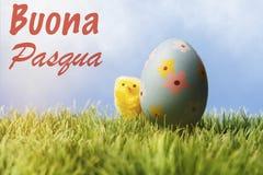 Testo di saluto di pasqua dell'italiano; Uovo di Pasqua e pollo blu Immagini Stock Libere da Diritti
