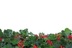 Testo fisso inferiore dell'edera e dell'agrifoglio Immagini Stock Libere da Diritti