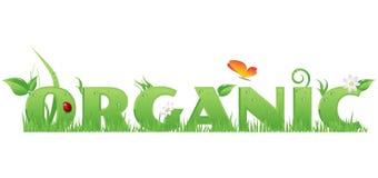 Testo organico Immagini Stock