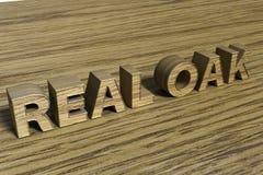 Testo reale della quercia 3D Immagine Stock