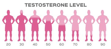 Testosterone hormone level / man stock illustration
