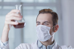 Tests in a flask in the hands of medic Royalty Free Stock Image