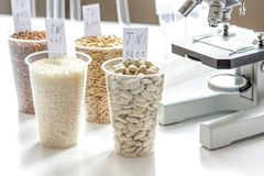 Tests for pesticides in cereal in at laboratory. No one Royalty Free Stock Photos