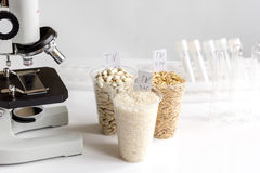 Tests for pesticides in cereal in at laboratory. No one Stock Image