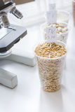 Tests for pesticides in cereal in at laboratory Royalty Free Stock Images