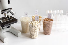 Tests for pesticides in cereal in at laboratory Royalty Free Stock Image