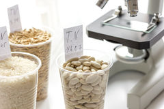 Tests for pesticides in cereal in at laboratory Royalty Free Stock Photo