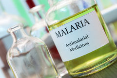 Tests for Research of Malaria. In laboratory Royalty Free Stock Photography