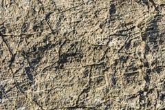 Testure carbonate rock Stock Photo